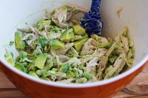 chicken-avocado-lime-salad-7-kalynskitchen