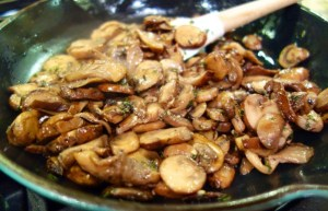 chicken-mushrooms